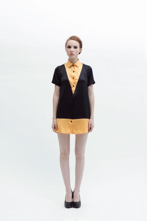 Carter Shirt Dress